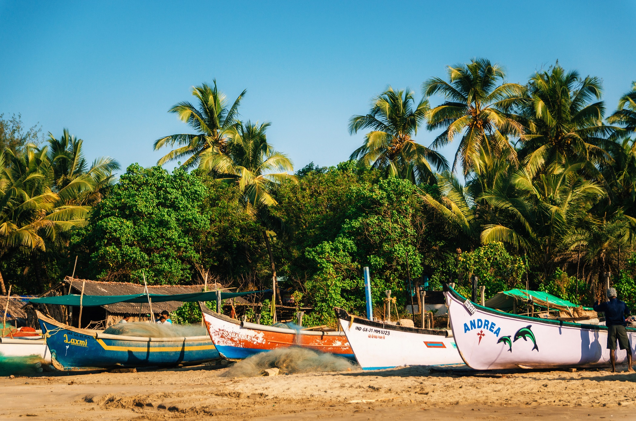morjim-beach-north-goa-ed