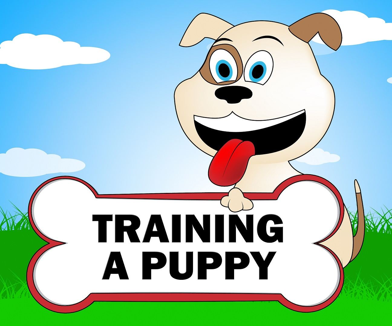 training-a-puppy