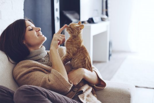 cat young-woman-wearing-warm-sweater-is-resting-with-a-cat