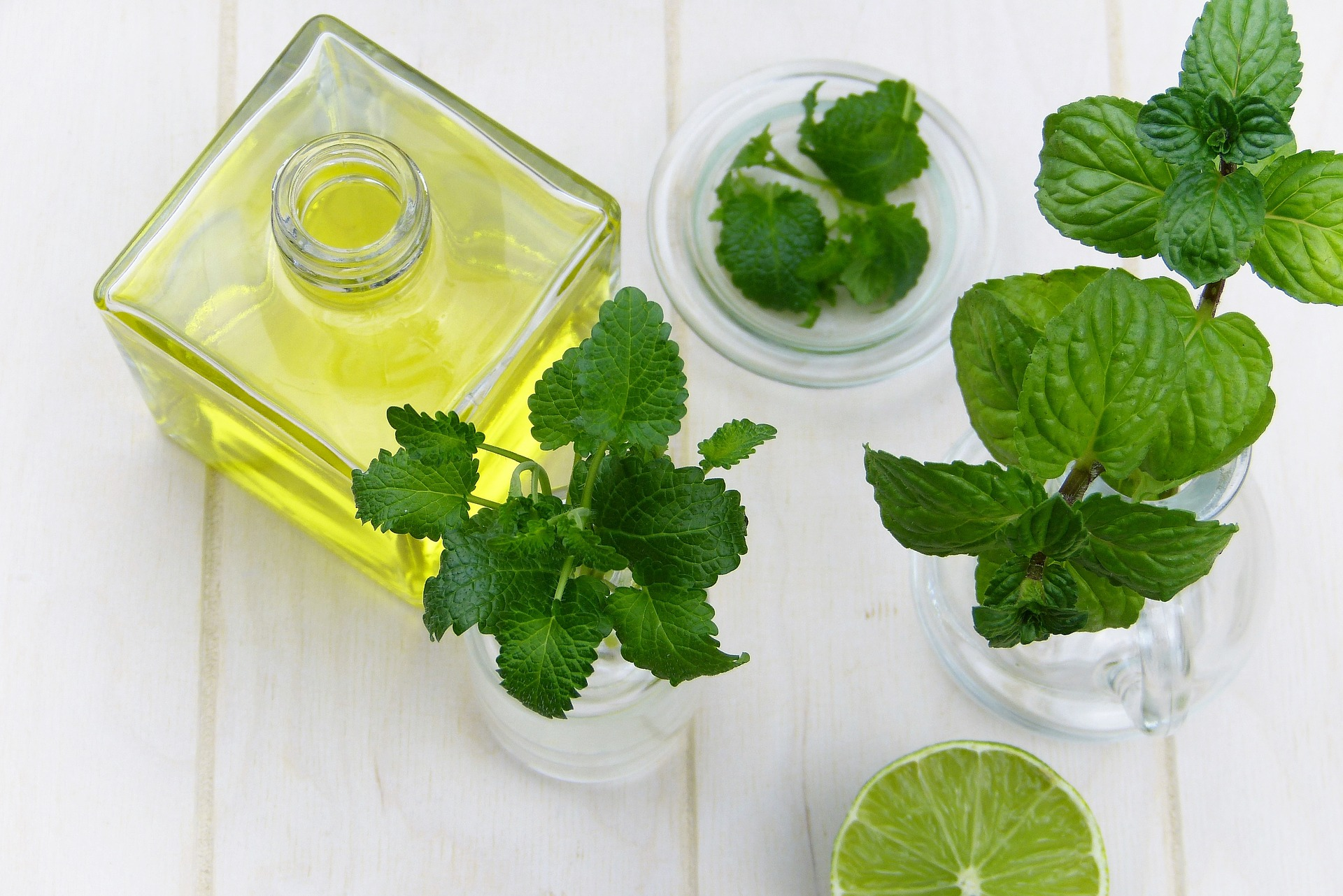 Peppermint helps to keep ants away