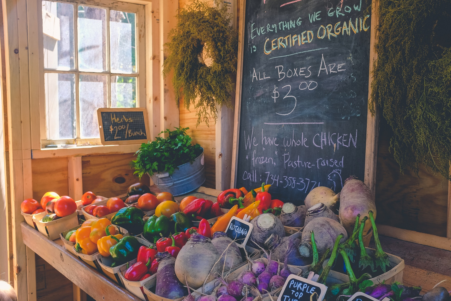 Organic stores are a good green business idea.