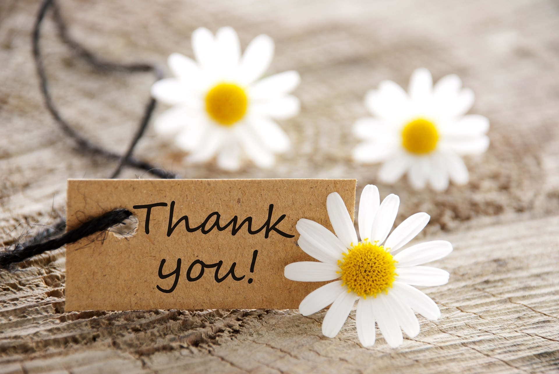 Hand-written thank you cards
