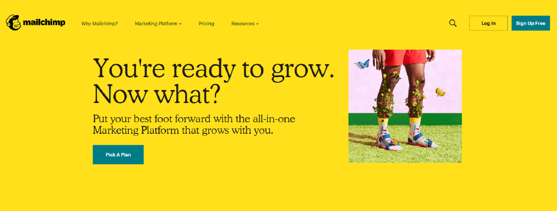 Mailchimp to organize your professional life.